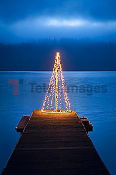 String of lights in tree shape on wooden pier