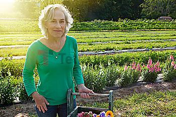 Older Caucasian woman smiling on farm