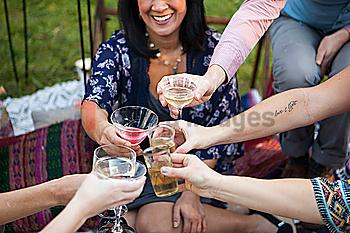 Friends toasting with champagne at picnic in park