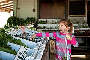 Mixed race girl shopping in farmers market