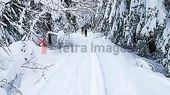 Caucasian couple cross country skiing in snow