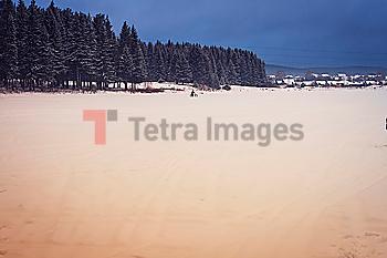 Snowy field in rural landscape