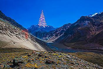 Distant Christmas tree on mountain