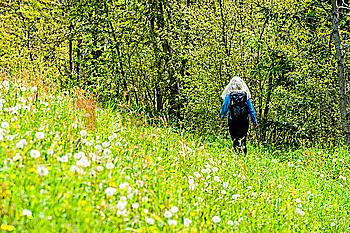 Woman hiking through wildflowers in Dolomites, Italy