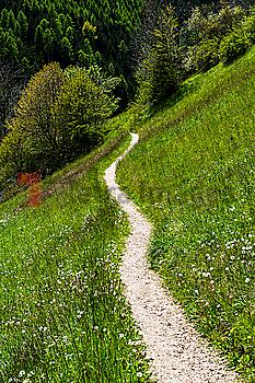 Panorama Trail through field in Dolomites, Italy
