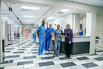 Nurses and doctors in hospital