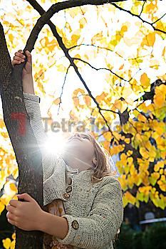 Girl climbing tree during autumn