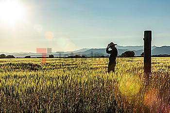 Silhouette of farmer in crop field in Picabo, Idaho, USA