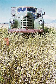 Abandoned truck in field of grass