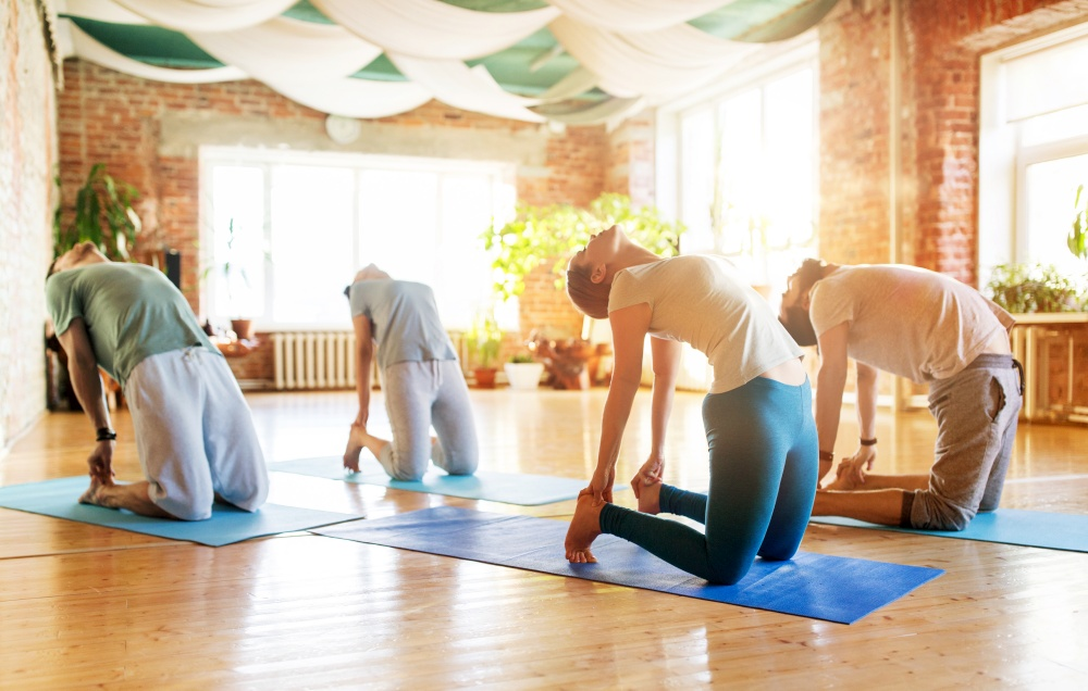 fitness, sport and healthy lifestyle concept - group of people doing yoga camel pose on mats in gym or studio. group of people doing camel pose at yoga studio