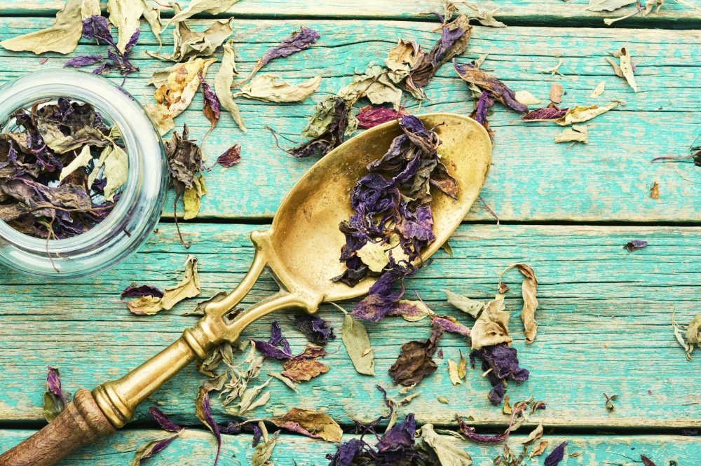 Dried natural basil spice in spoon.Natural dried herbs. Dried spices in spoons,dry basil leaves